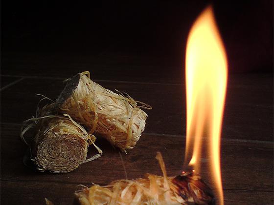 Brennholz kaufen siegburg bonn köln anlieferung