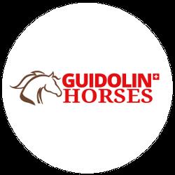 GUIDOLIN HORSES