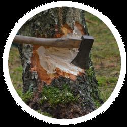 Forstarbeiten mit einer Axt