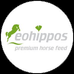 eohippos
