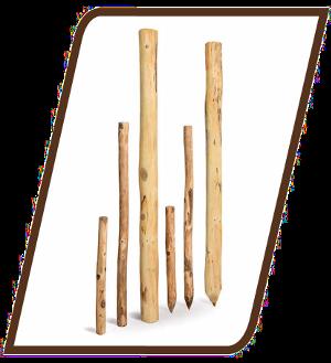 Eine Reihe verschieden großer Pfähle aus Robinie zur Verwendung als Zaunpfahl