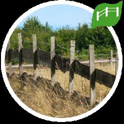 Zäune und Zaunpfähle